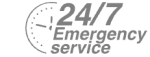 24/7 Emergency Service Pest Control in Clapham, SW4. Call Now! 020 8166 9746